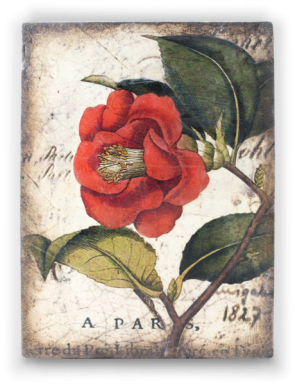 Sid Dickens Tile Red Camellia